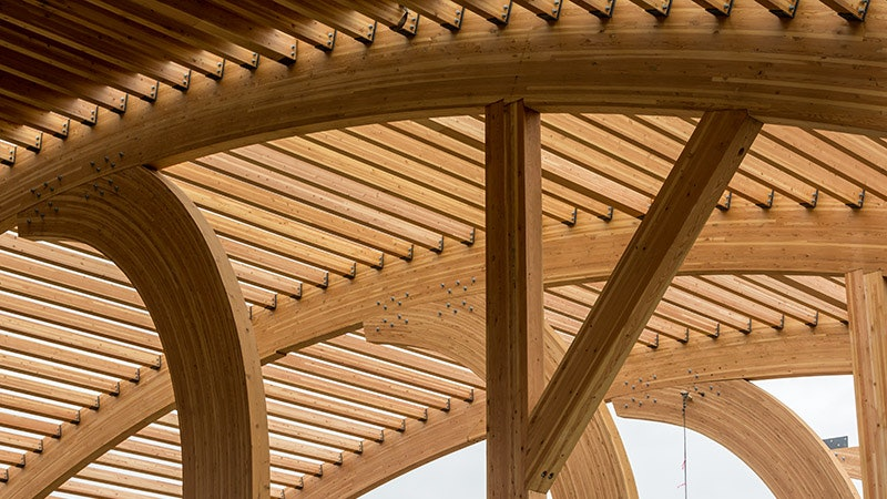 Timber Structures 101